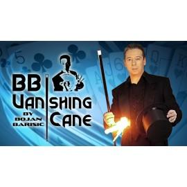 BB Vanishing Cane by Bojan Barisic