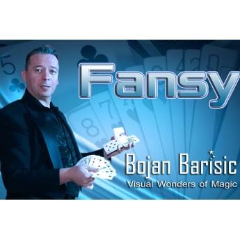 Fansy by Bojan Barisic