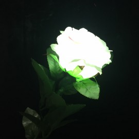 ROSE LUMINEUSE + FP LUMINEUX RECHARGEABLE (Rouge)