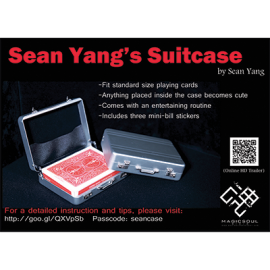 Valise by Sean Yang and Magic Soul