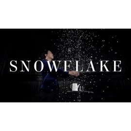 Snowflake - The snowstorm